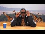 Snoop Dog narating Animal documentary VERY FUNNY!!!!