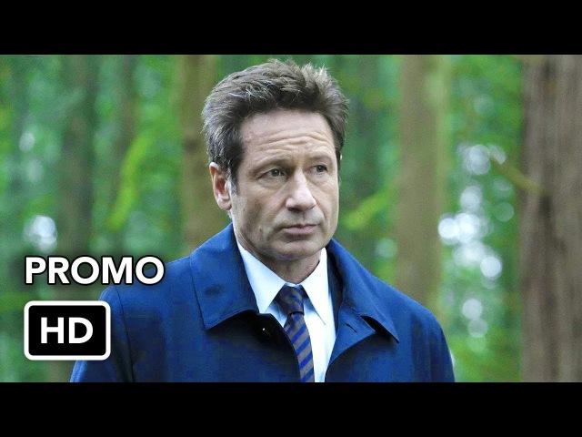 The X-Files 11x06 Promo Kitten (HD)