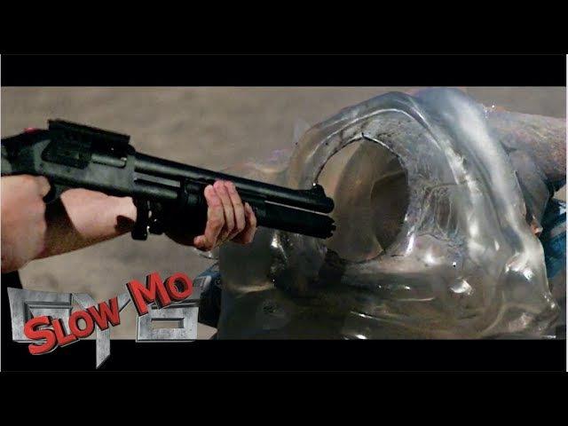 12 Gauge Shotgun SLUG at Point Blank Range