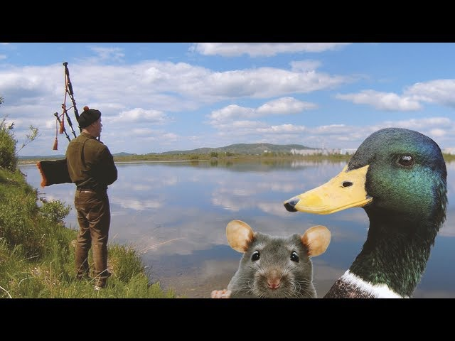 Волынки звук над озером - The melody of the bagpipes over the lake
