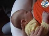 Правильное прикладывание ребенка к груди, признаки готовности сосать грудь.