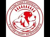 Семипалатинск старые собачьи бои!!