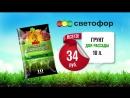 Светофор_грунт (1)