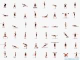 48 упражнений на все группы мышц