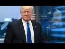За что кукушка хвалит петуха: первое заседание кабинета Трампа