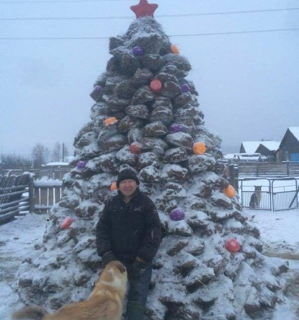 В России мужчина в качестве экономии сделал новогоднюю ёлку из фекалия (Фото)