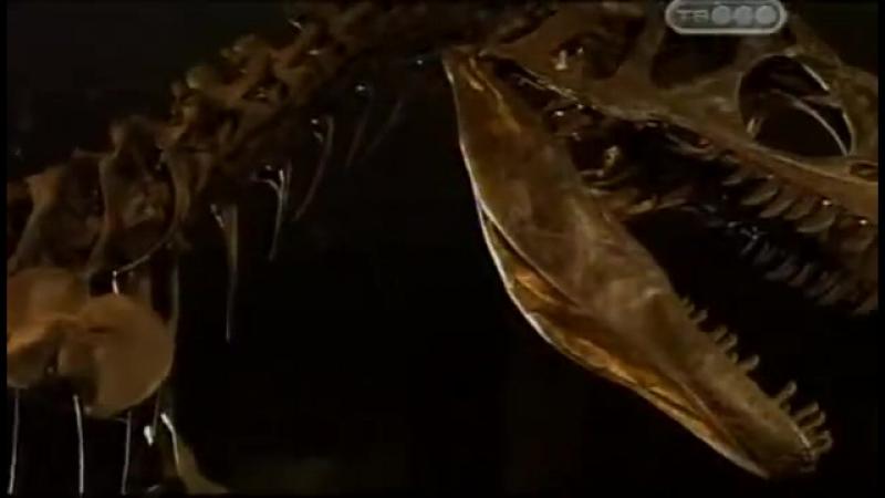 Самые крупные и опасные хищники юрского периода. Охота на цератозавра