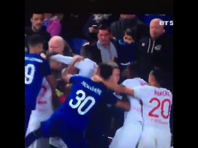 Ashley Williams starts crazy fight between Everton and Lyon players