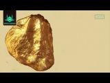 Если бы сын адама имел долину, полную золота   Шейх Рияд уль Хакк  www Yaqin kz