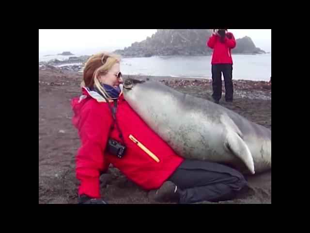 Zwierzęta też lubią się przytulać