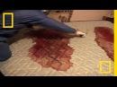 Crime Scene Cleaners Real Life CSI