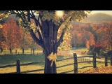 Ray Conniff - Tie a yellow ribbon round the ole oak tree (HD) (CC)