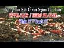 CUỘC SỐNG THIÊN NHIÊN - TÉP THỦY SINH PHẦN 17 - TRUNG THU NÀY Ở NHÀ NGẮM TÉP CẢNH