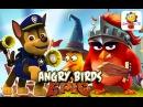 Angry Birds - Щенячий патруль и ЗЛЫЕ ПТИЧКИ - Гонщик спешит на помощь! Мультфильм для детей