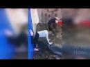 PRIKOLY 2017 Noyabr 328 rzhaka do slez ugar prikol PRIKOLYUHA