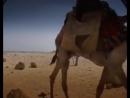 Загадки Древнего Египта. 2005 г