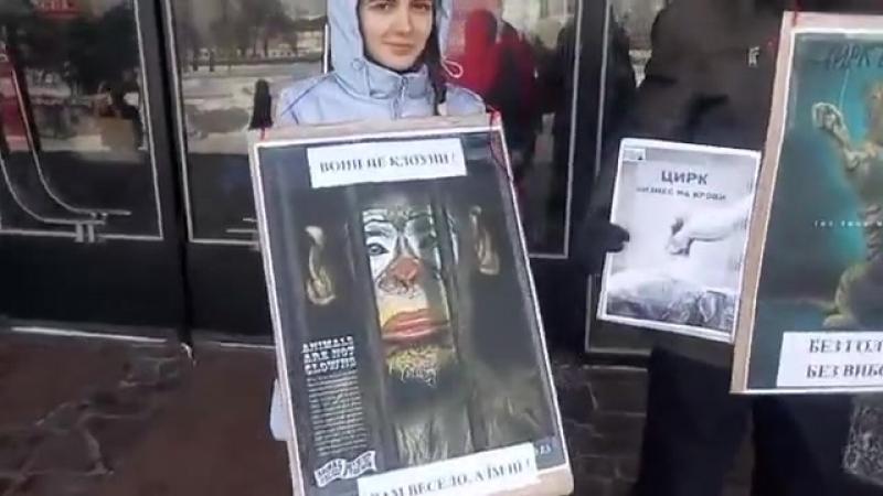 Акция защиты животных у государственного цирка, Харьков - 2018