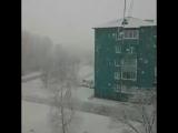 Обильный снегопад в Лучегорске, Приморский край 17.10.2017
