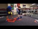 Тренировка Сауля Альвареса к бою с Головкиным