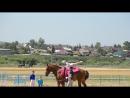лошадь и дети верховая езда