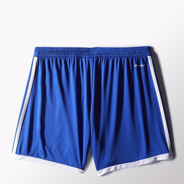 Спортивные шорты TAST 15 SHO WK