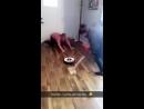 Кёрлинг роботом пылесосом VIDEO ВАРЕНЬЕ