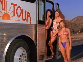 Полный автобус девушек в бикини / Тупой и ещё тупее