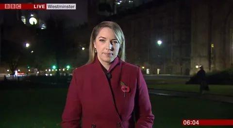 Во время эфира BBC телезрители услышали женские стоны (Видео)