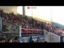 Дельфины играют в футбол в Сочи за 100 дней до ЧМ-2018