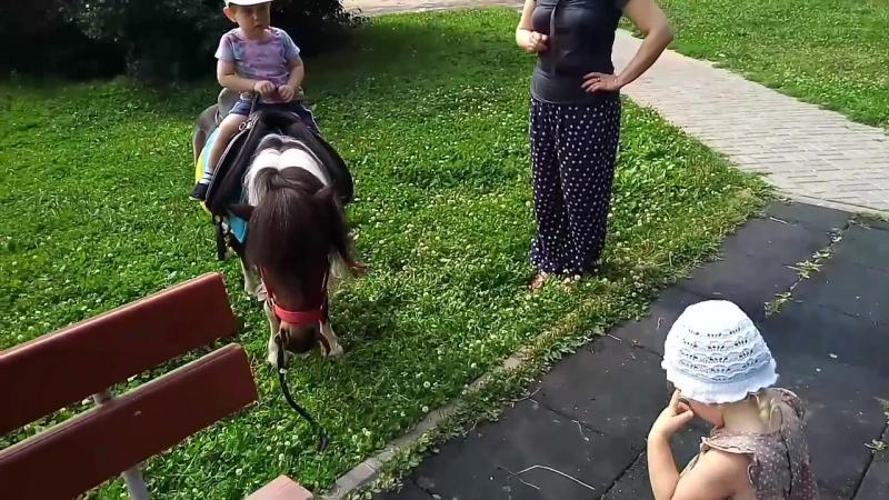 Пока коневод в Пятерочке