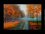 Листья жёлтые над городом кружатся    М Вилцане и О Гринберг