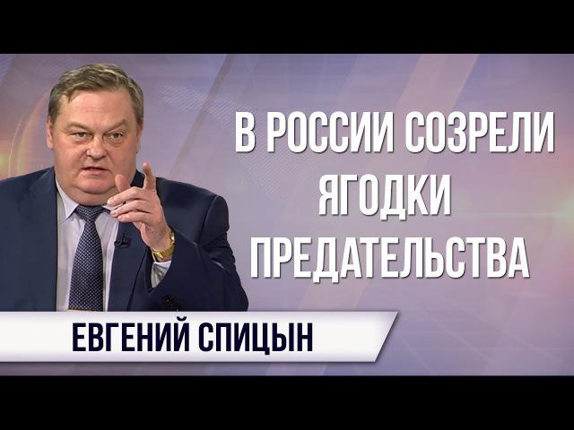 Евгений Спицын Кто вырастил русского гимназиста скорбящего по невинным гитле