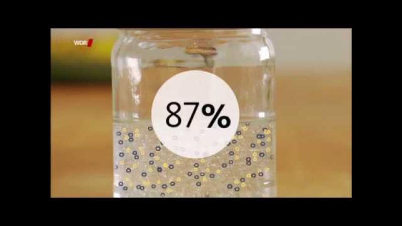 Lebensmittelgift ISOGLUCOSE ▶ Seit 1.10.17 unbeschränkt in Deutschland zugelassen