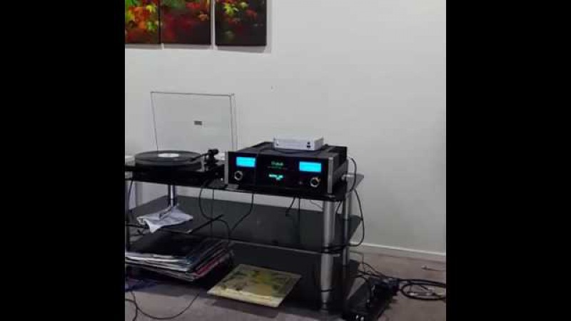 Dynaudio focus 160 Mcintosh Ma5200