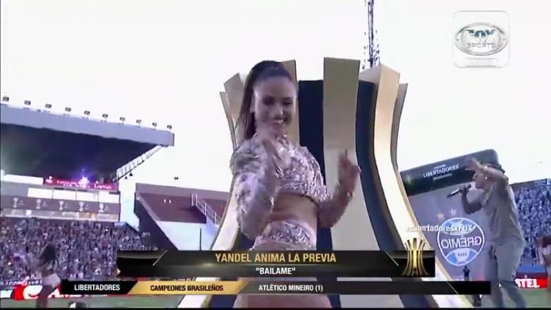 Yandel copa libertadores