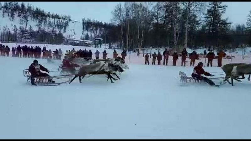ДньОленвд в Эссо (24.02.18.)старт гонки