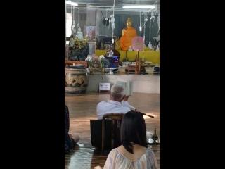 Монахи читают мантры в храме Будды
