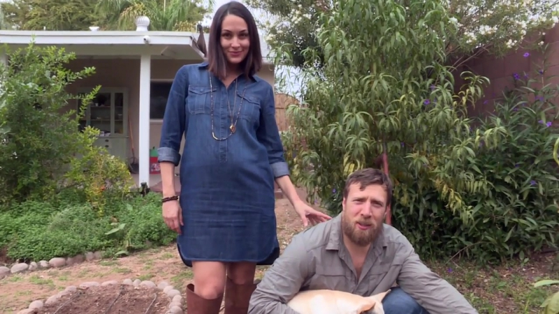 Gardening 101 with Brie and Daniel Bryan (Winston shows off his green paw, too!))