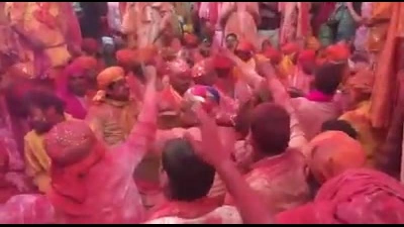💕💥 Ladoo Holi live from Shri Dham Barsana
