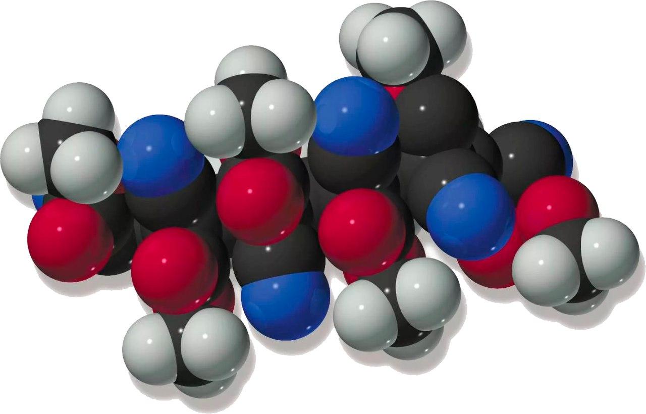 Структура макромолекул