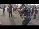 Танцует военнослужащий Khalwa Alya Nairi. Поёт Биз тобу и Бактияр Токторов