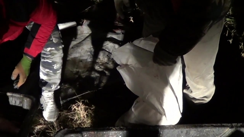 В Татарстане полицейские изъяли 1200 кг рыбы у браконьеров из Заинска