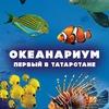 Океанариум Казань