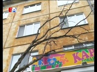 В Первоуральске ликвидируют последствия непогоды. На улице Трубников от сильного ветра упали деревья. Пострадавших нет.