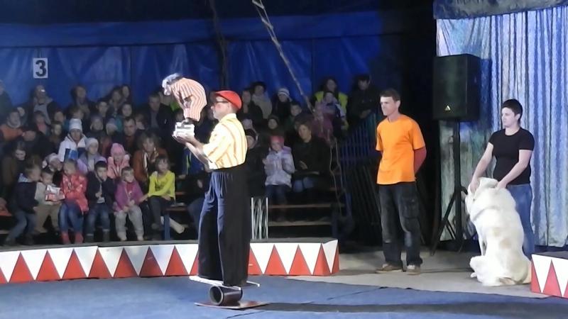16.10.2016 Цирк Шапито