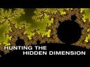 Фракталы. Поиски новых размерностей  Fractals. Hunting The Hidden Dimension (2008)