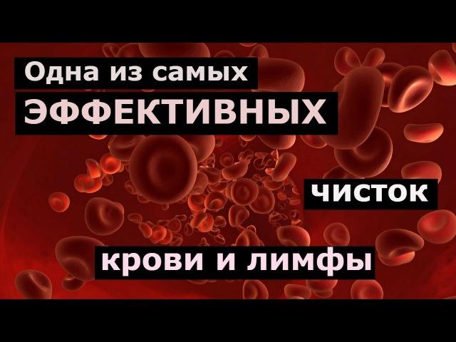 Чистка крови и лимфы по методу Нормана Уокера