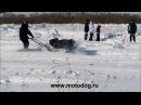 Зимние гонки на мотобуксировщиках март 2013г