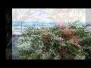 Tchaikovsky - Waltz of the Flowers (Nutcracker)