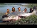 MAMMOTH RECORD CATFISH 265 POUND HD by CATFISHING WORLD